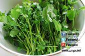 فوائد الجرجير واضراره 10 فوائد مدهشة للجرجير وعصير الجرجير Watercress Watercress Recipes Vegetables