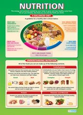 Nutrition | Design Technology Educational School Posters