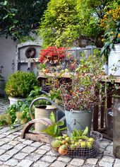 Courtyard 9: DIY in autumn and a cornucopia of nature in the courtyard  – Herbstliches