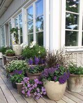 Container garden #containergardening #gardeningwit…
