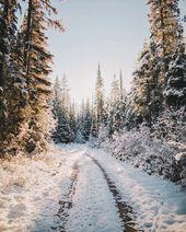 Radtouren am frühen Morgen im Haskill Basin. Das einzige, was die Stille störte, waren meine Reifen, die auf dem frischen Schnee Spur brachen. Und obwohl ich …