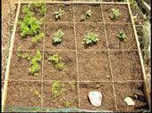 Quadratmeter Gartenarbeit kann Ihnen helfen, Zeit im Garten zu sparen – so geht's.   – How To My Gardening Guide