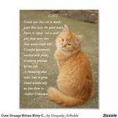 Orange Kitten Photo With Poem Print Zazzle Com Orange Kittens