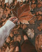 Photography Autumn Pictures 63 Trendy Ideas