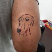Ich kann das Gesicht dieses Hundes nicht ausstehen, der etwas falsch gemacht hat 😂💕. . . #linetat …