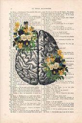 Gehirn Kunstdruck auf 1900 Vintage Seite botanische Blumen Poster Zeichnung menschliche Anatomie Illustration Wandkunst Halloween erhalten auch Geschenk Zeichnung – psicología