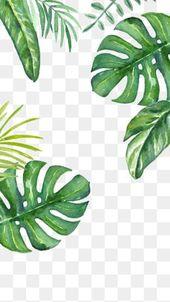 Watercolor Leaves, Watercolor Clipart, Cartoon, Ha…