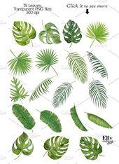 Tropical Leaves by EllyStudio on Creative Market