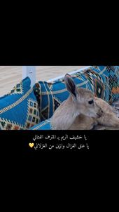 يا خشيف الريم يـ المترف الفتاني يا عنق الغزال وازين من الغزلاني Quran Quotes Inspirational Love Smile Quotes Beautiful Arabic Words