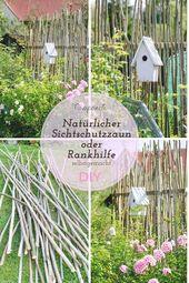 Screening oder unkonventionelle Spalier DIY   – Garten Diy