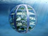 2116: Underwater cities, downloadable meals and 3D-printed houses just a century... 2