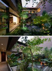 Jardin d'intérieur : la nature au cœur d'une maison mexicaine