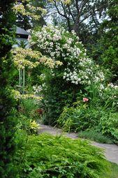 A Romantic Garden White Gardens Romantic Garden