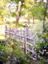 Gorgeous Garden at a Historic Home An overgrown Tu…