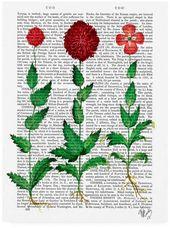 Fab Funky Italian Carnation 2 Canvas Art – 15.5 x 21