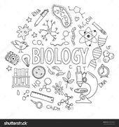 Hand gezeichneter Vektor eingestellt mit Schulausrüstung. Kann für Design verwendet werden. Biolog…