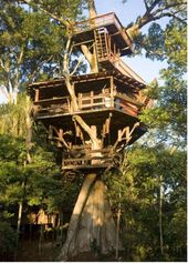 Porecato Treehouse Ricardo Brunellie Brazil S Preeminent Treehouse Builder Built This House About 300 Miles W Tree House Cool Tree Houses Tree House Designs