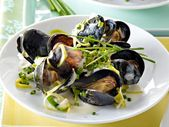 Photo of Recipes with mussels – mussel recipes