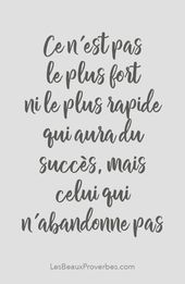 «Ce n'est pas le plus fort ni le plus rapide qui aura du succès, mais celu…