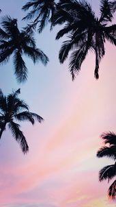 iPhone Hintergrundbild 9 Summer Sunset iPhone Hintergrundbilder, um die Winterdepression zu t…