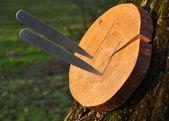 Wie man ein Wurfmesser wirft – Die Techniken, die jeder Anfänger kennen sollte   – Knife throwing