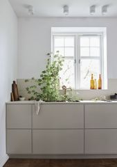 Köket och bänkskivan! (Daniella Witte)
