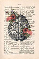 Gehirn Kunstdruck auf 1900 Vintage Seite botanische Blumen Poster Zeichnung menschliche Anatomie Illustration wa – Products
