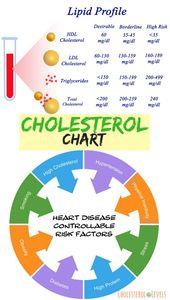 What are the Good Cholesterol Numbers   CholesterolLevels.net 1