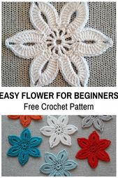 This Straightforward Crochet Flower For Learners Is So Cute! [Free Sample