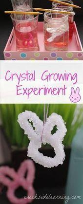 Coole wissenschaftliche Experimente: Wachsende Kristalle