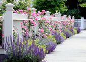 10 Ideen für die Gartengestaltung für Anfänger