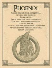 $5 AUD – Phoenix Poster A4 Size Wicca Pagan Witch Witch Goth Book Of Shadows #ebay #Lifestyle