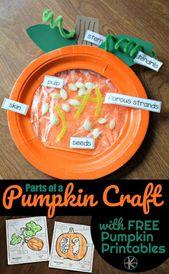 Parts of a Pumpkin Craft and free worksheet for preschool, prek, and kindergarte…