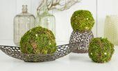 Mossballs selber machen   – DIY