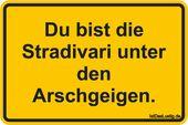 Du bist der Stradivari unter den Arschgeigen. … zu finden auf www.istdaslustig ….   – Witzig