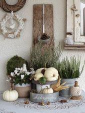 Kürbisse, Blumen, Nüsse: Der Herbst bringt uns e…
