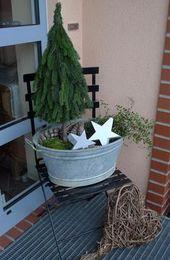 Kleiner Baum in Zinkwanne