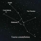 , #Star Bild Tätowierung,  #Bild #Star #SternbildTattoostier #Tätowierung