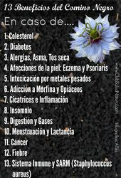 13 beneficios de las semillas de comino negro – Club Salud Natural #cominonegro   – Salud