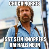 20 Funny Chuck Norris jokes that never get old