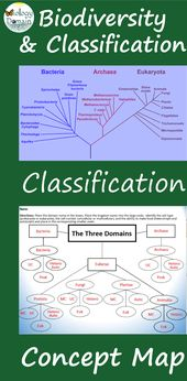 Illustrate How Life Is Connected Using This Using The Domains And Major Kingdoms Of Life In One Graphic Org Concept Map Graphic Organizers Biology Lesson Plans