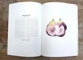 Magazine Kinfolk   – Design.