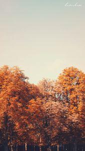 Free Download: Autumn Wallpaper ♥ Desktop & Mobi…