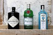 Total in: Gin! 10 Fakten