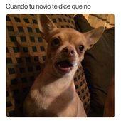 #memesespañol #chistes #humor #memes #risas #movies