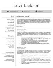 Modele De Cv Professionnel En Vente Telechargement Par Levsresumes Modele De Cv Professionnel Modele Cv Cv Professionnel