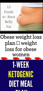 Obese weight loss plan ♥ weight loss for obese women #weightlosstipsforobese 1