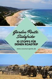 Garden Route Highlights: Top 10 attractions for your road trip
