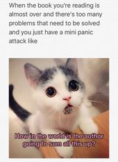 7 Mémoires de chat et de livre que seuls les toxicomanes en lecture peuvent se rapporter à  – Library Humor