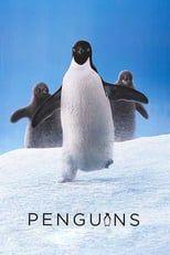 Pinguinos 2019 Online Latino Hd Con Imagenes Peliculas Completas Peliculas En Espanol Latino Peliculas Completas Gratis